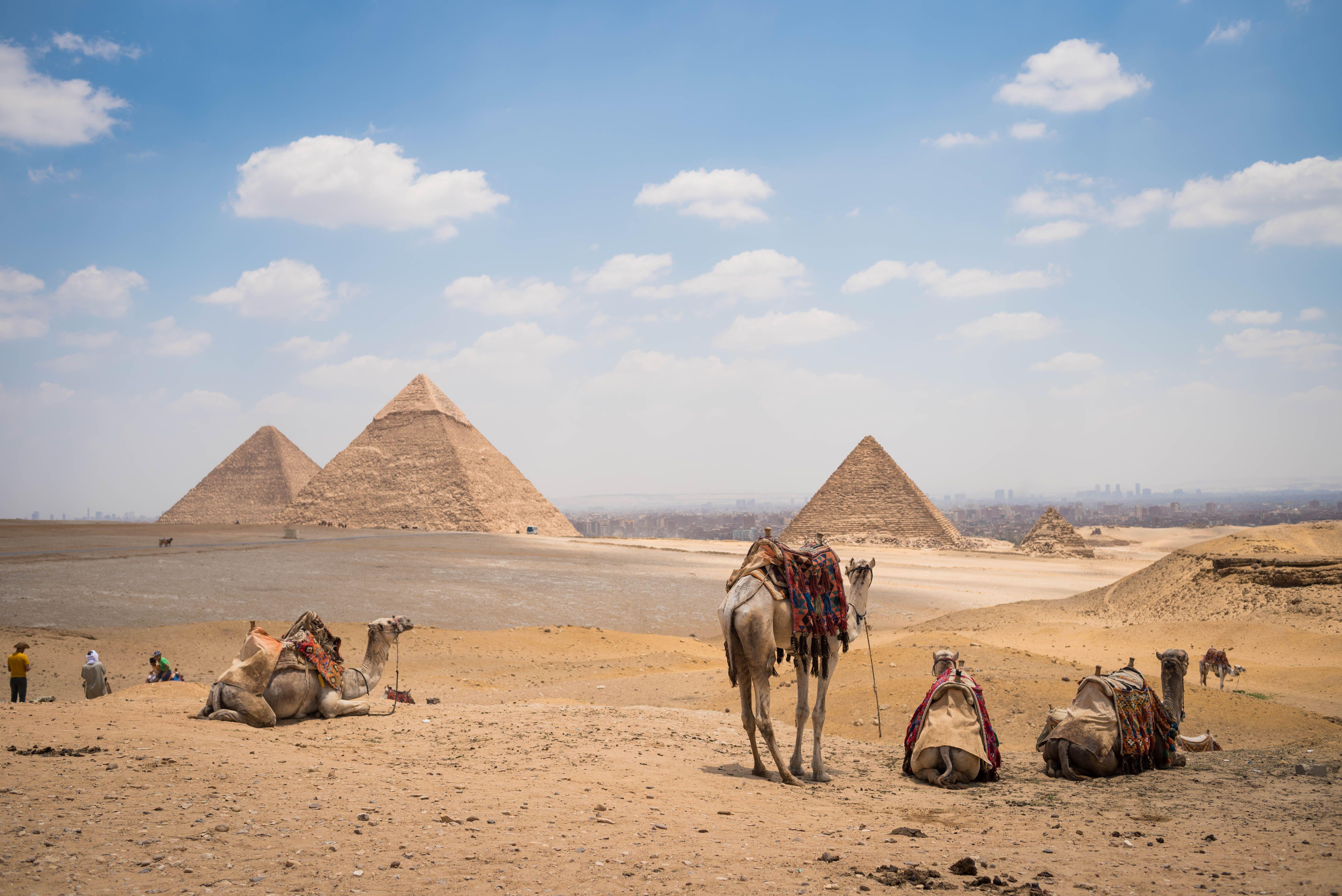 http://www.shepherdtravelegypt.com/wp-content/uploads/Egypt_2016_0050102162.jpg